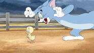 Tom-jerry-wizard-disneyscreencaps.com-198