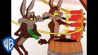 Looney Tunes Coyote's Great Use of Dynamite Classic Cartoon WB Kids