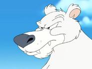 Polar Peril - Polar bear mad close up