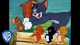 Tom & Jerry Friends or Enemies? Classic Cartoon Compilation WB Kids