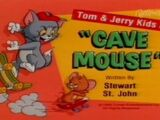 Cave Mouse