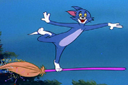 Wikia-Visualization-Main,tomandjerry