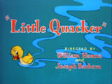 Little Quacker