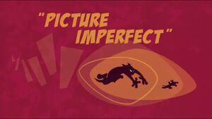 PictureImperfect