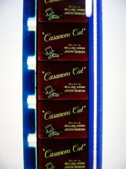 Casanova cat original titles