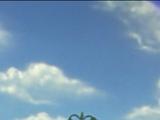Томас и радуга