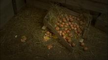 ThomasGetsItRight60