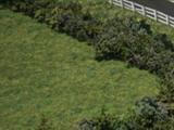 Рельсы под автомобильным мостом и сигнальная будка