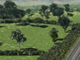 Свиноферма фермера Троттера