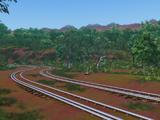 Тропический лес Куранды