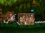 Masakari Jungle cage