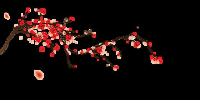 Risultati immagini per cherry blossom png
