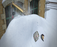 SnowPlaceLikeHome81