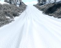 SnowTracks55