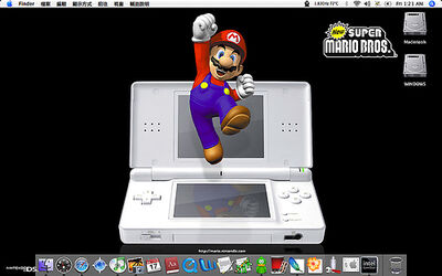 Mario on the Nintendo DS Lite.