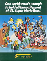 Vs.SuperMarioBros.Flyer