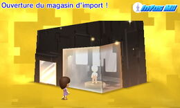 Magasin d'import Infos Mii