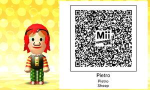 Pietro QR Code