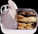 Sardines TL