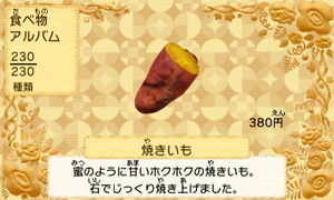 Roast yam jp