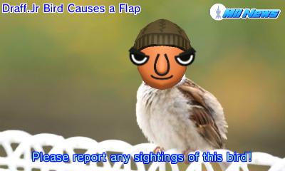 MiiNewsBabyBird