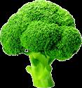 Broccoli TL
