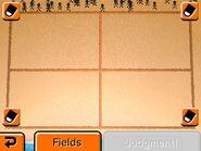 4 fields JB