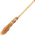 Broom TL