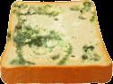Moldy Bread TL