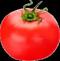Tomato TL