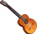 Guitar TL
