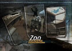 Loading Screen Zoo