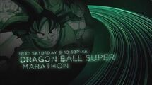 Dragon Ball Super 2017 Marathon - Toonami Promo