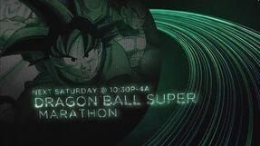Dragon Ball Super 2017 Marathon - Toonami Promo