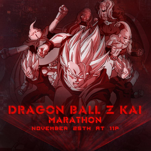 DBZ Kai Marathon Thanksgiving 2017