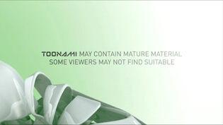 Toonami Disclaimer St Patrick's Day 2013