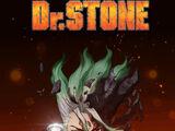 Dr. Stone