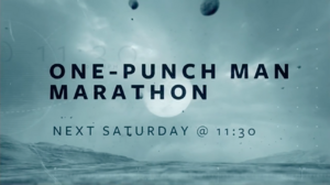 One Punch Marathon