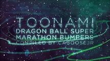 Dragon Ball Super Marathon - Toonami Bumpers (December 2017)