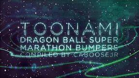 Dragon Ball Super Marathon - Toonami Bumpers (December 2017)
