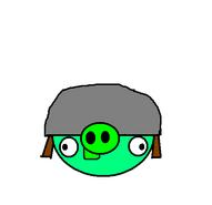 Helmet Pig