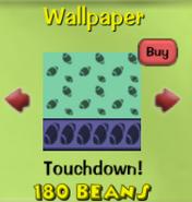 Touchdown!20