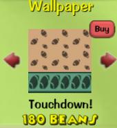 Touchdown!13