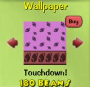 Touchdown!40
