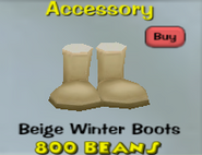 Beige Winter Boots