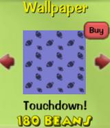 Touchdown!3