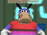 Vidalia VaVoom