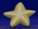 Starfish treasure