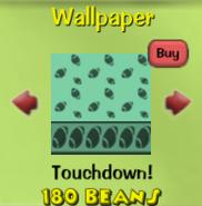 Touchdown!14
