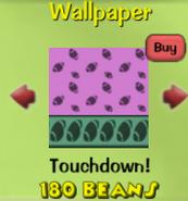 Touchdown!16